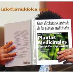 GRAN DICCIONARIO ILUSTRADO DE LAS PLANTAS MEDICINALES   LIBRO